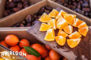 Desert-Treasure-Orange-Groves-02