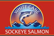 whitecane_logo_web